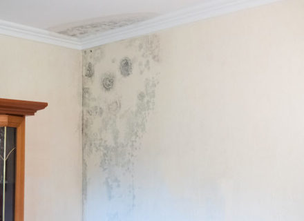 How To Fix Water Damaged Drywall Superior Re Irvine